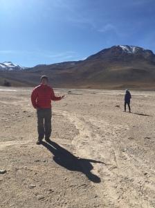 Kate tracks a stray vicuña