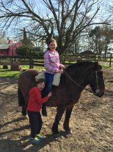 Loving the horses
